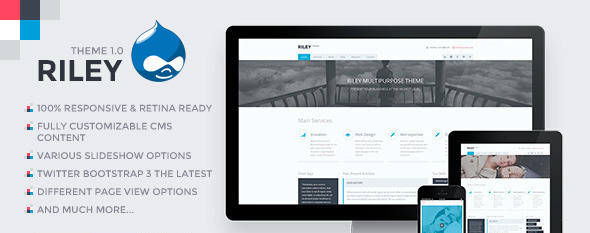 RILEY - Responsive MultiPurpose HTML5 Template